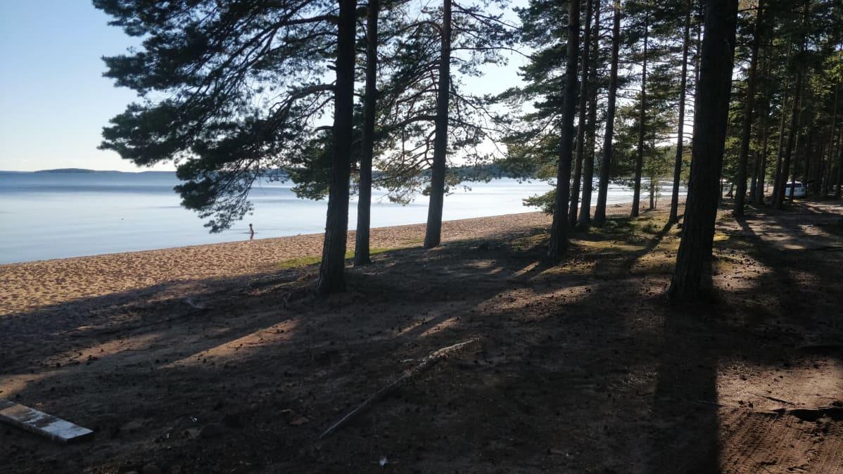 Yksi Suomen pisimmistä hiekkarannoista on myös varjoisa puiden ansiosta