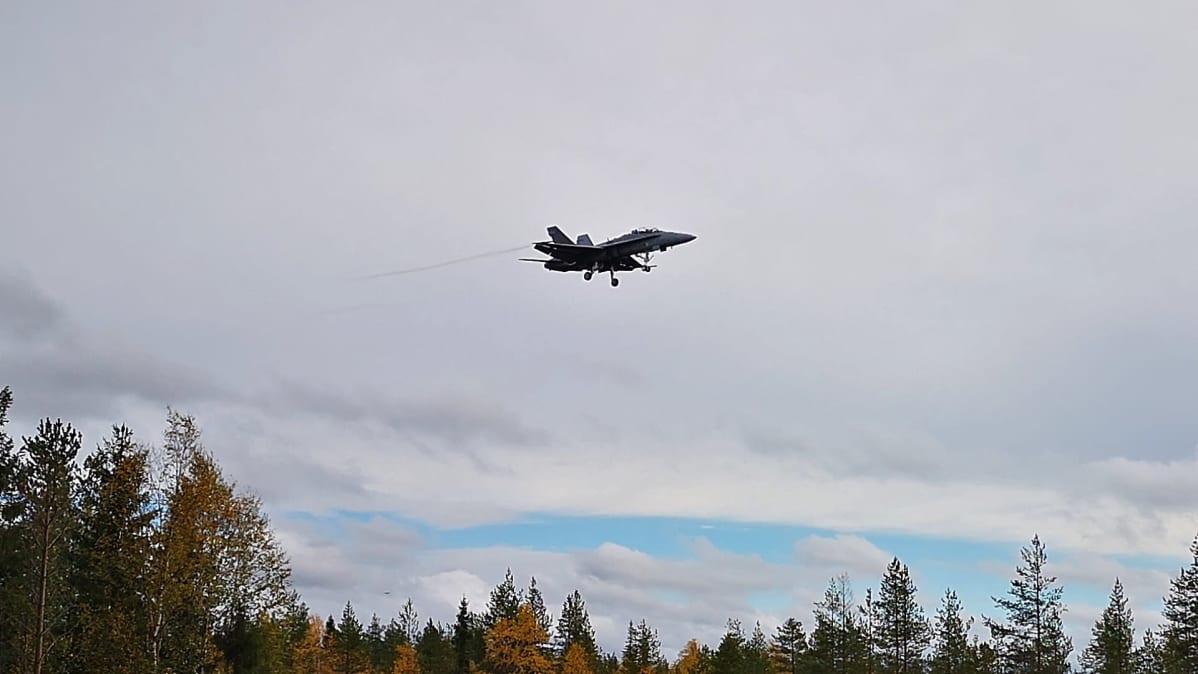 Hornet lentää taivaalla.