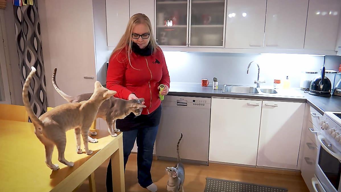 Nainen syöttää kissoja keittiössä.