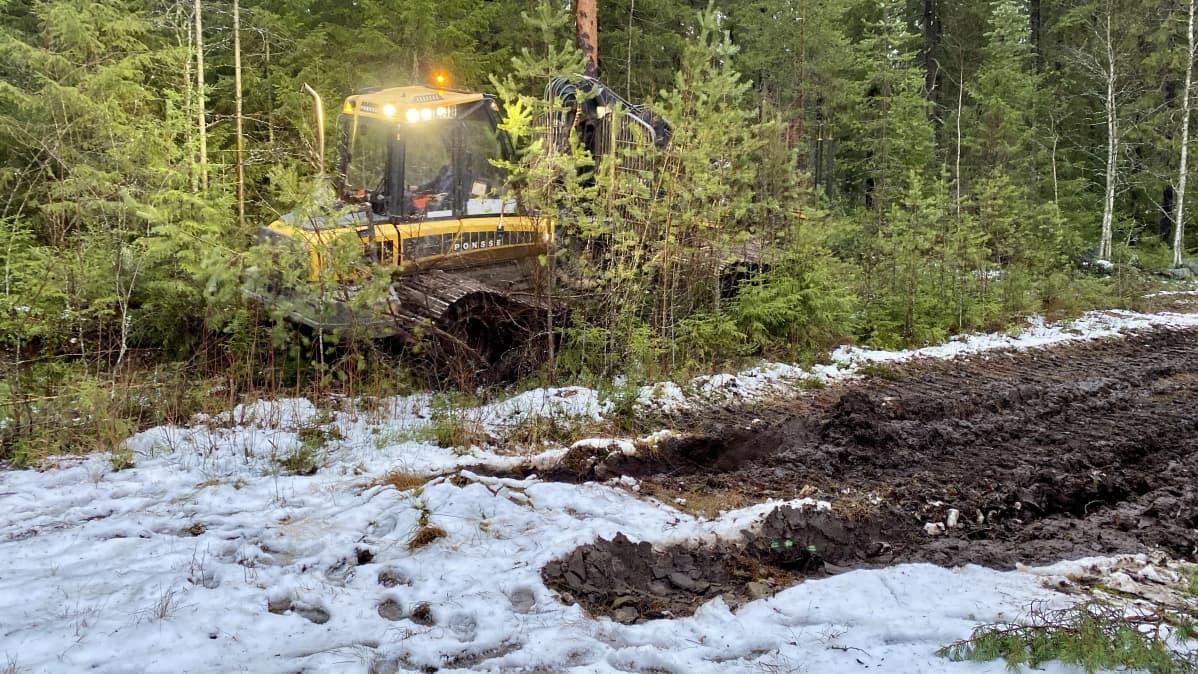 Metsätyömailla kaivattaisiin pakkasia ja routaa.