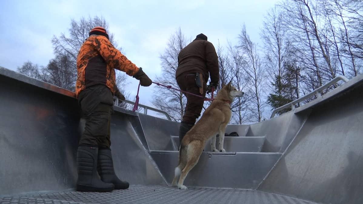 Koira ja metsästäjät veneessä