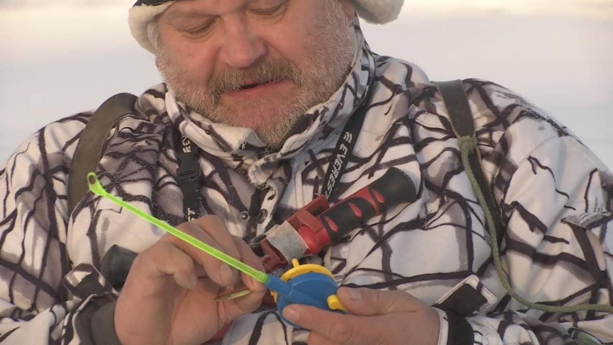 Mies pitää pilkkivieheitä käsissään jäällä pakkasessa