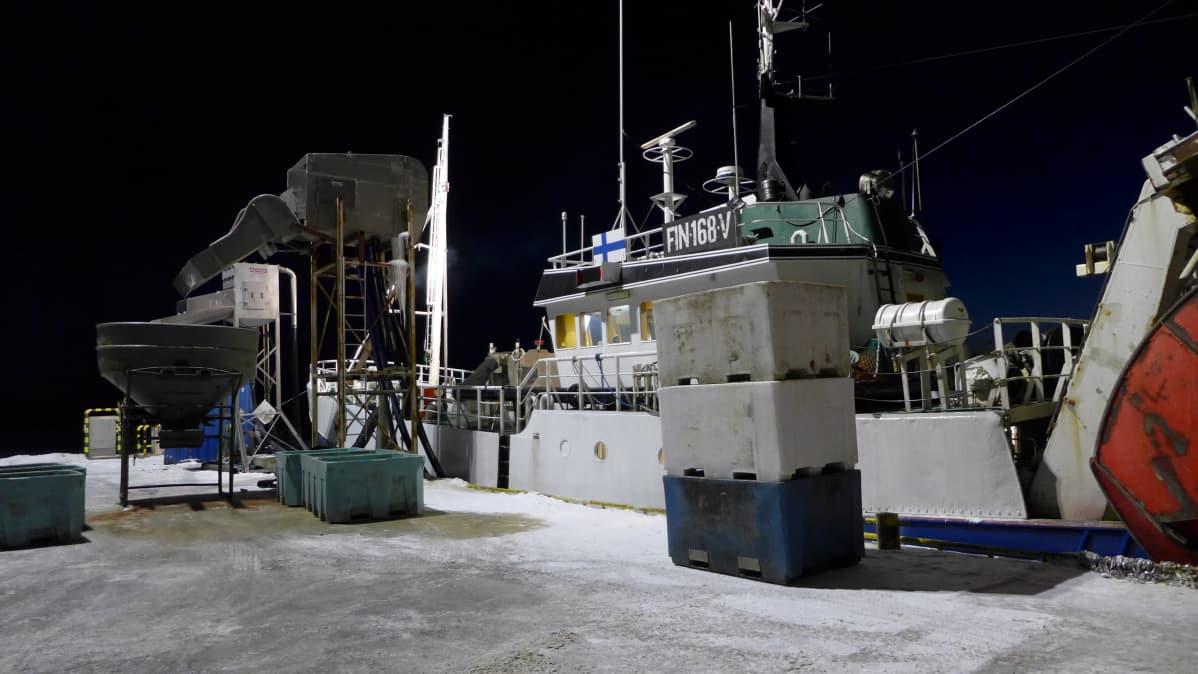 Troolari Hanne Reposaaren kalasatamassa