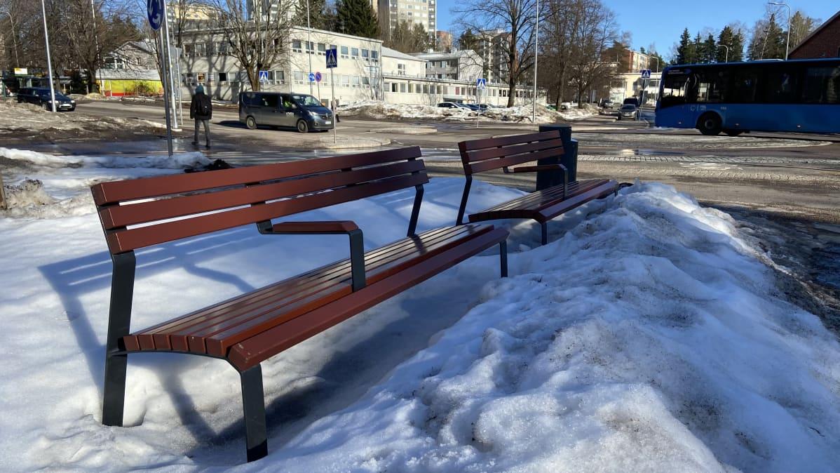 Penkki Runar Schildtin puistossa