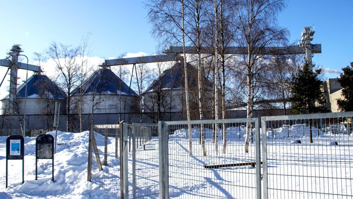 Stora Enson Oulun tehtaan siiloja koirapuiston takana talvella.