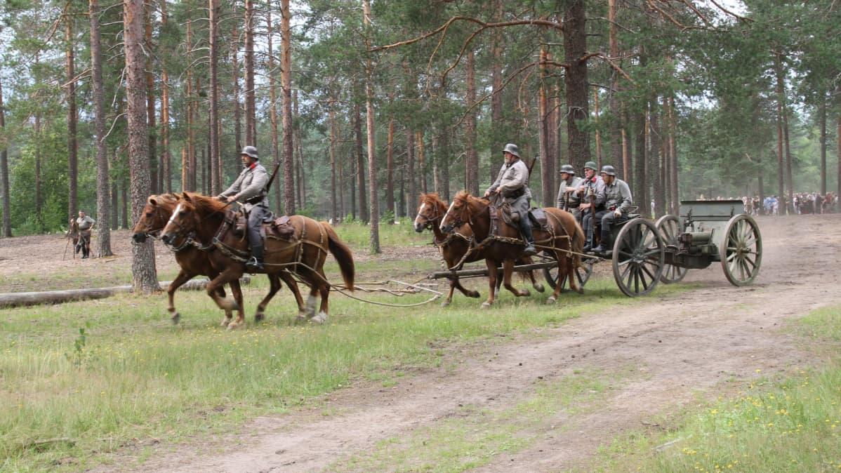 Perinnetykkivaljakko kesäisellä metsätiellä näytöksessä ihmisiä taustalla katsomassa