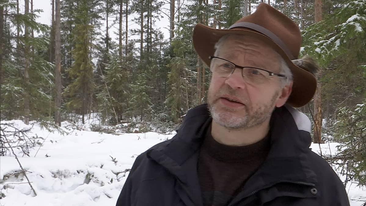 Tiimiesimies Ilkka Korhonen, Metsähallitus