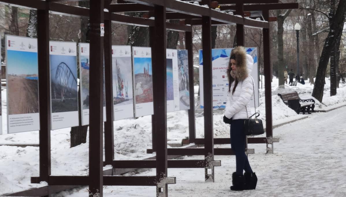 Arktis-näyttely Moskovan keskustassa.