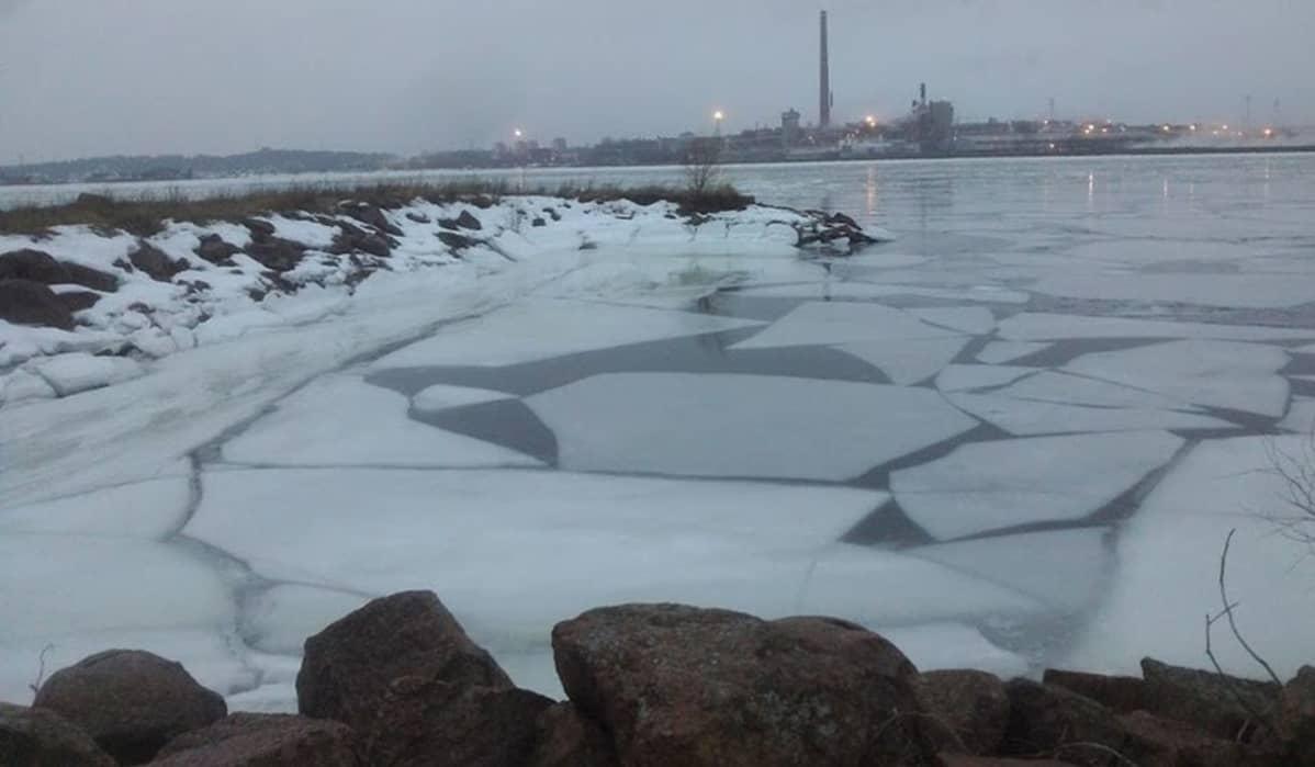 jäälauttoja merellä