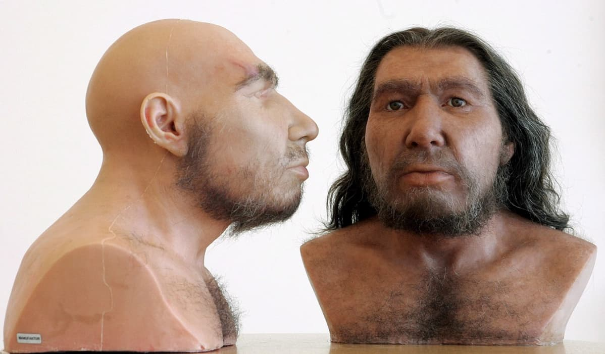 Neandertalilaisen 3-D-kuva edestä ja sivusta. Toisessa mallissa pitkä tukka, toisessa kalju pää.
