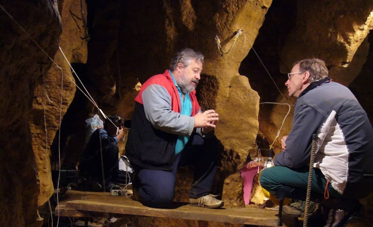 El Sidron luola, neandertalilaisten tutkimusta