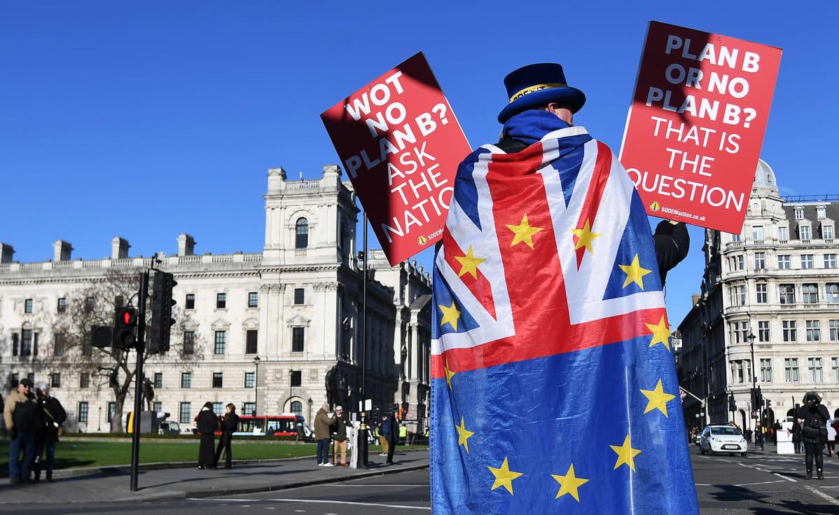 Mielenosoittaja Englannin parlamenttitalon edustalla
