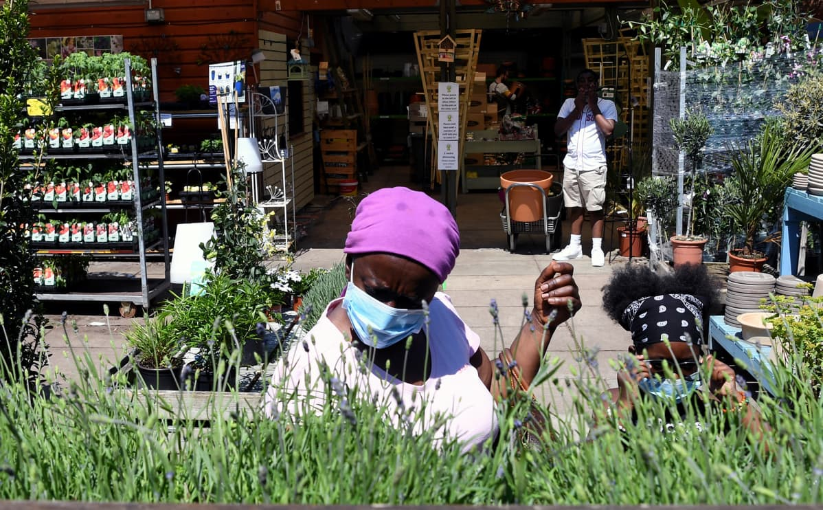 Asiakas tutkii kukkia puutarha-alan kaupassa.