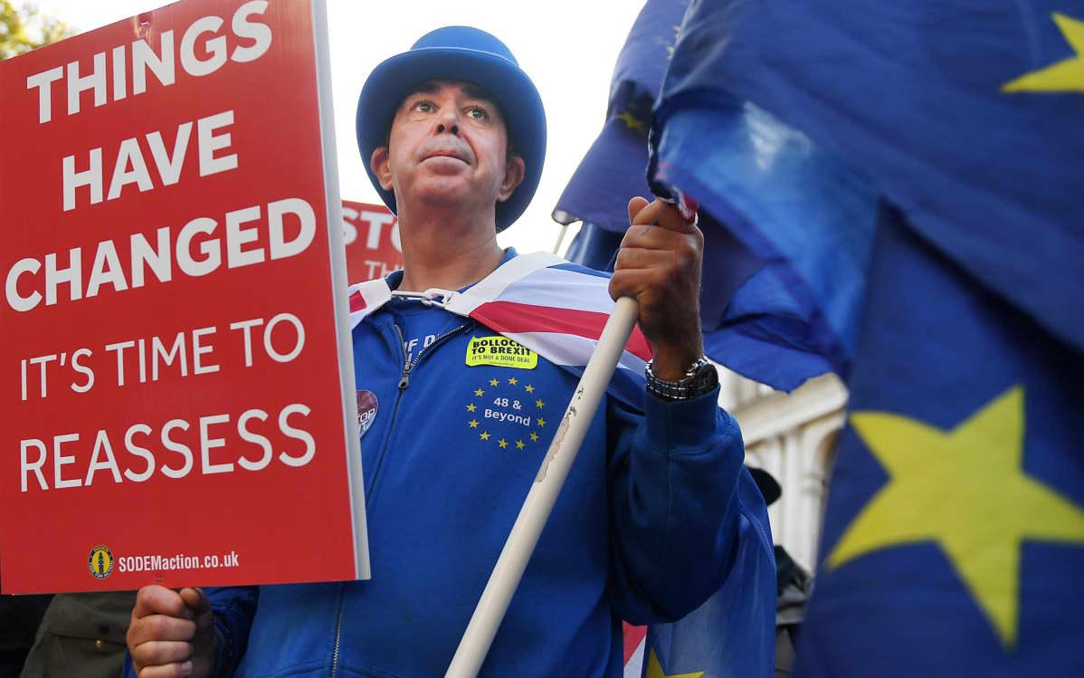 brexitiä vastustava mielenosoittaja