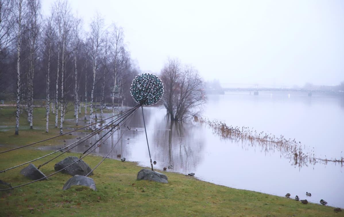 Porin Kirjurinluodossa tulvii. Kokemäenjoki.