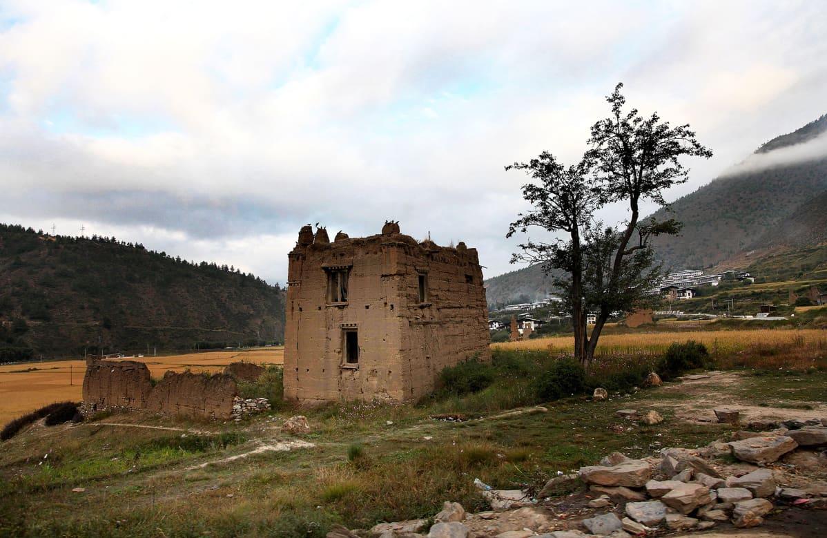 Bhutanilaista maaseutumaisemaa.