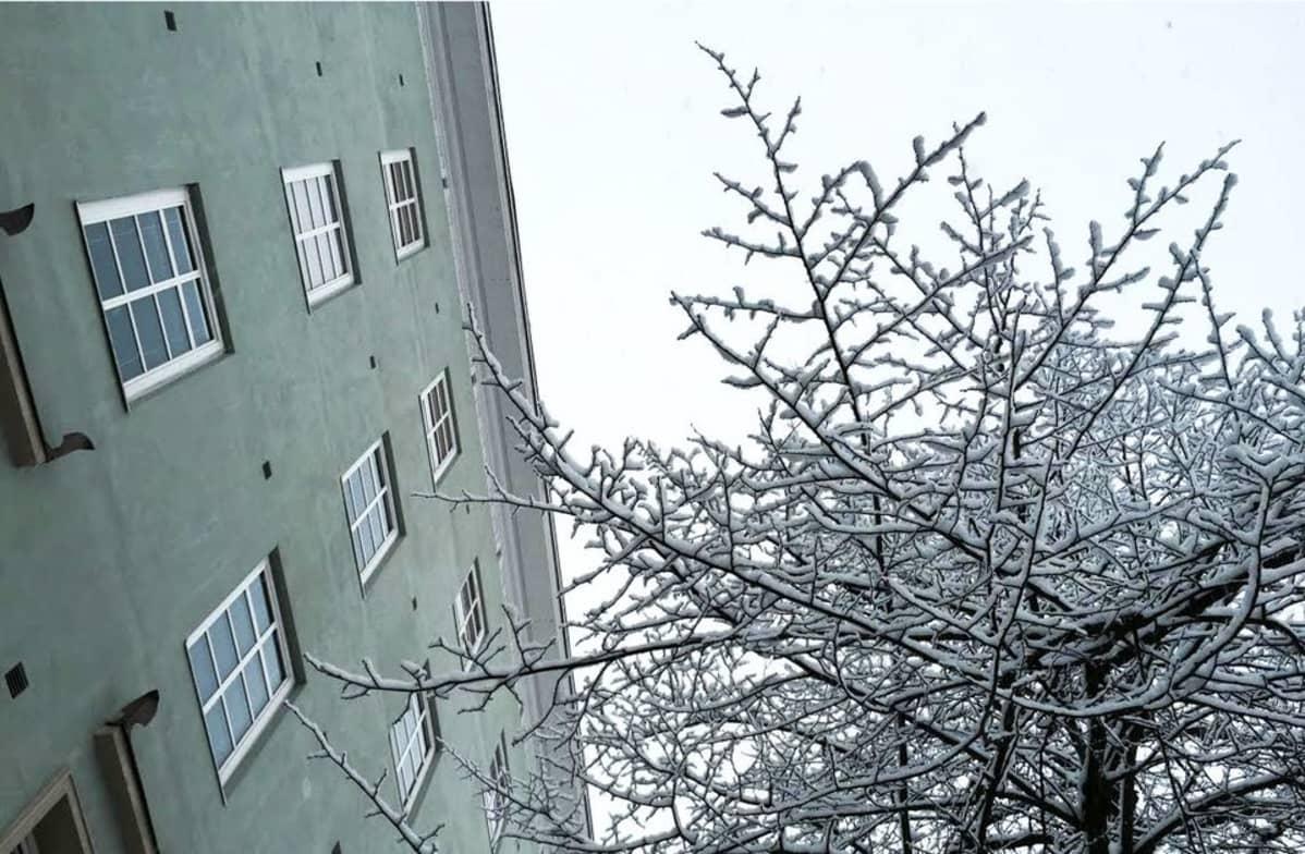 Luminen Aleksanterinkatu Lahdessa.
