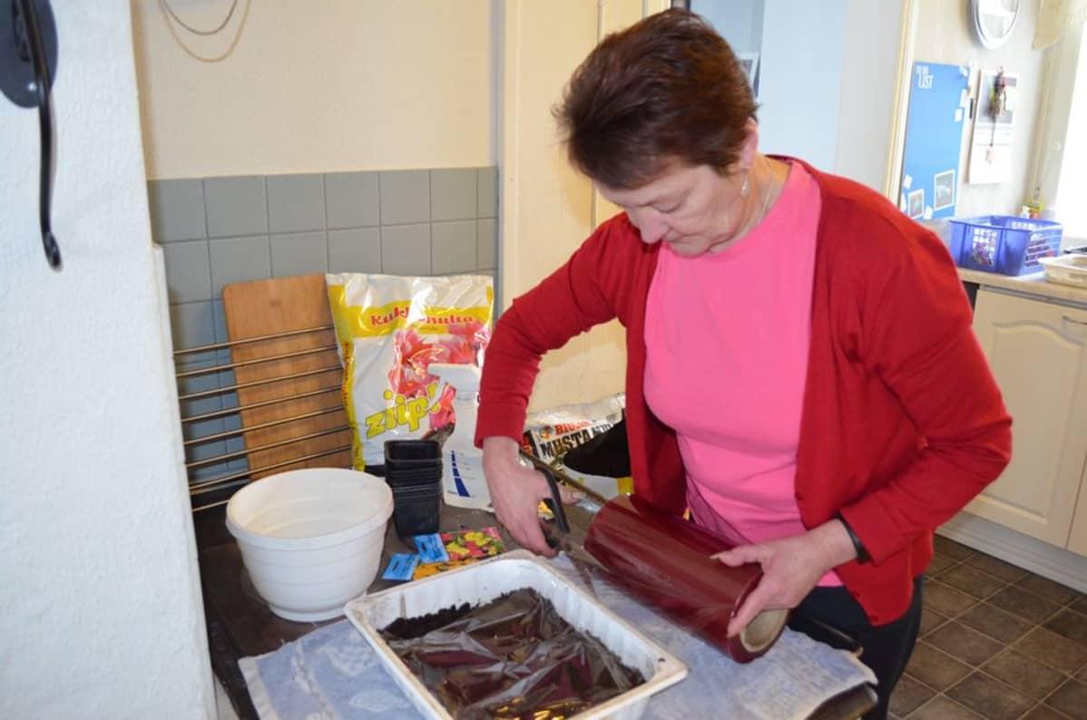 Kun siemenet on kylvetty, astia kannattaa peittää muovilla. Muoviin on hyvä tehdä reikiä, jotta multa ei homehdu, neuvoo viherpeukalo Irma Vatilo.