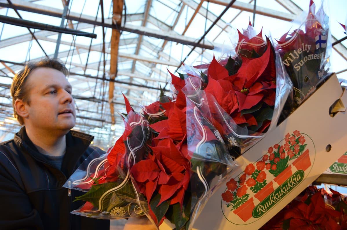 ESa Järvelä ja joulutähdet lähdössä myyntiin.