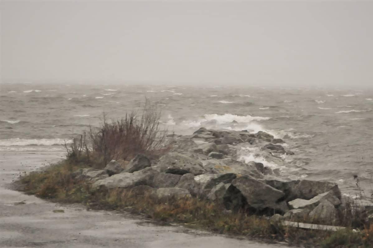 Liisa-myrsky kuvattuna Vaasassa 19.11.2020