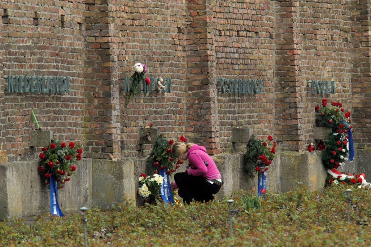 Kukkia muurilla