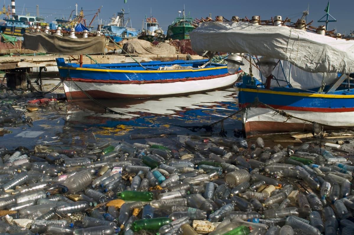 Meressä lauttana kelluvia muovipulloja.