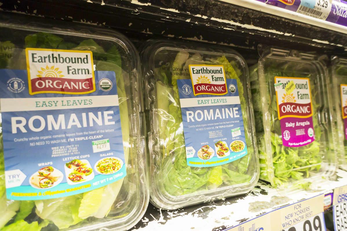 Romaine-salaattirasioita.