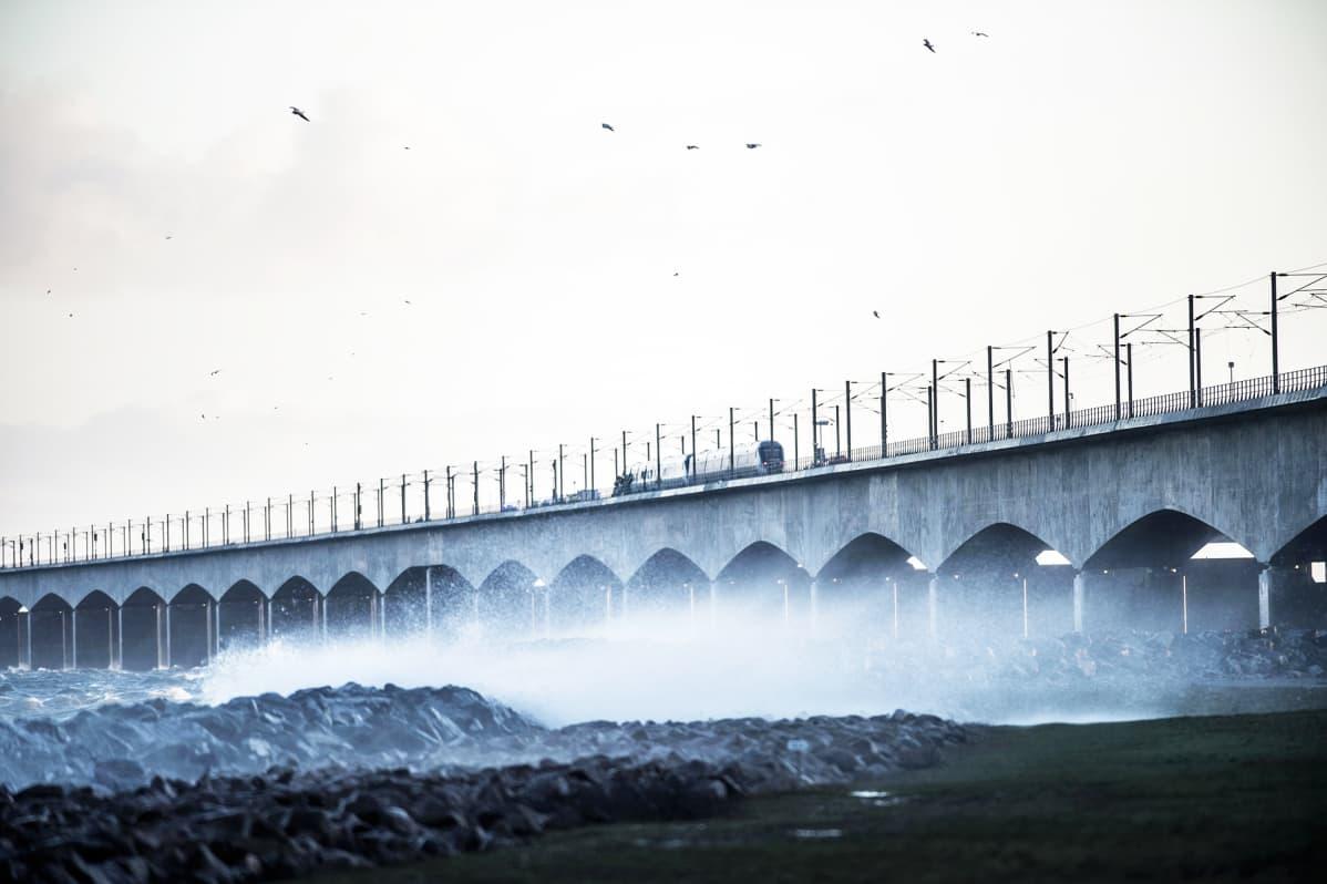 Ison-Beltin silta Tanskassa.