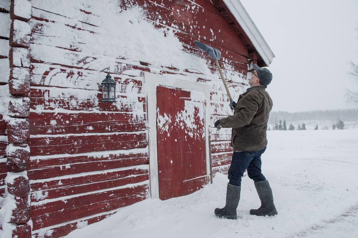 Rauno etsii vuosilukua vanhan hirsitalon seinästä.