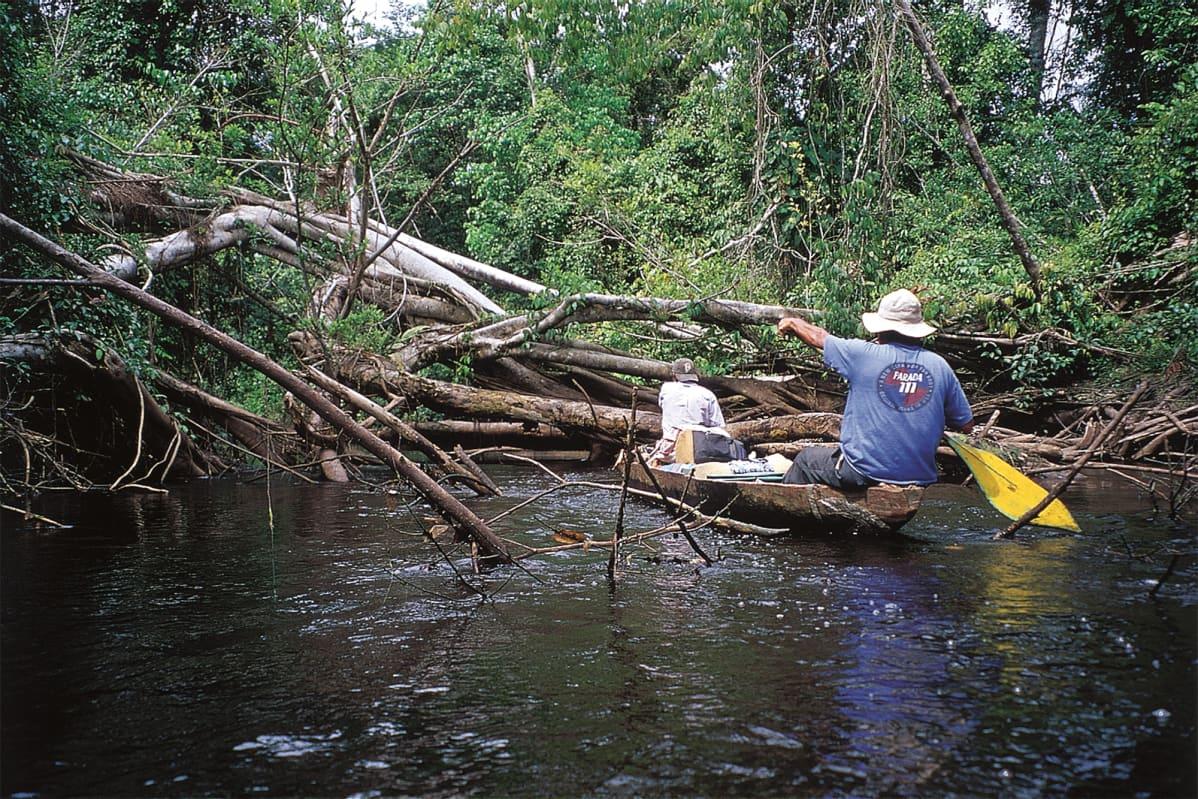 Kaksi miestä kanootissa siirtymässä tutkimualueelle.