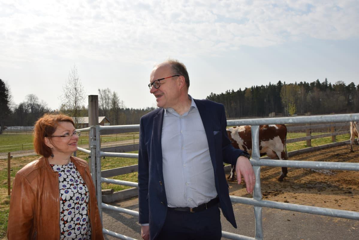 Mies ja nainen katsovat toisiaan, takana lehmät ulkoilevat.