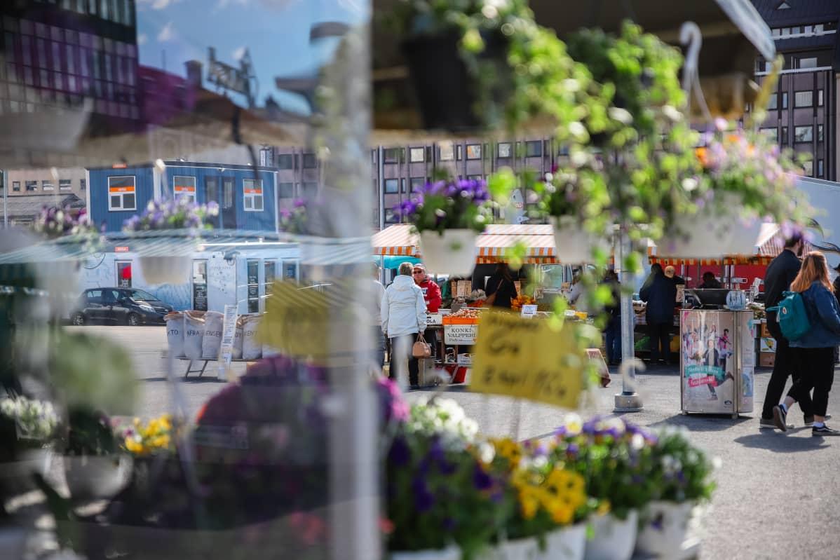 Turun kauppatori kuvattuna kasvien läpi.