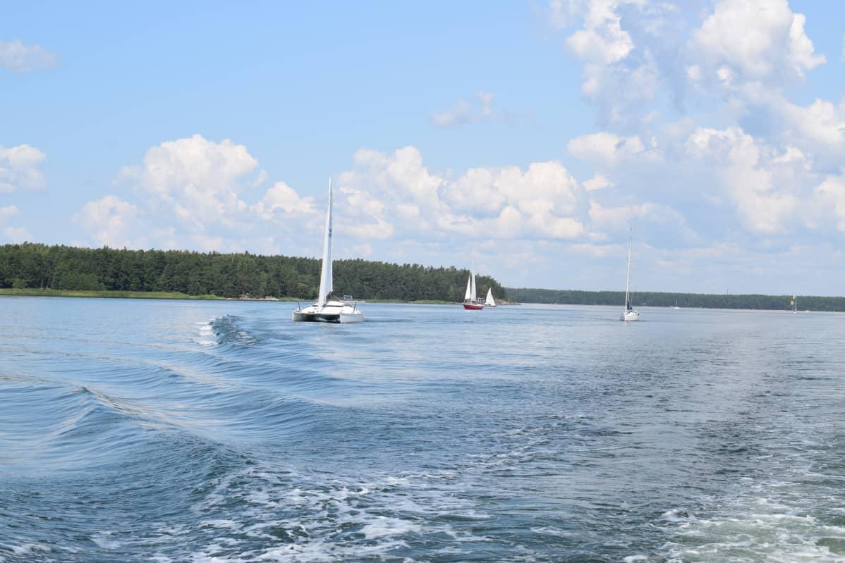 Veneitä Saaristomerellä heinäkuussa 2019.