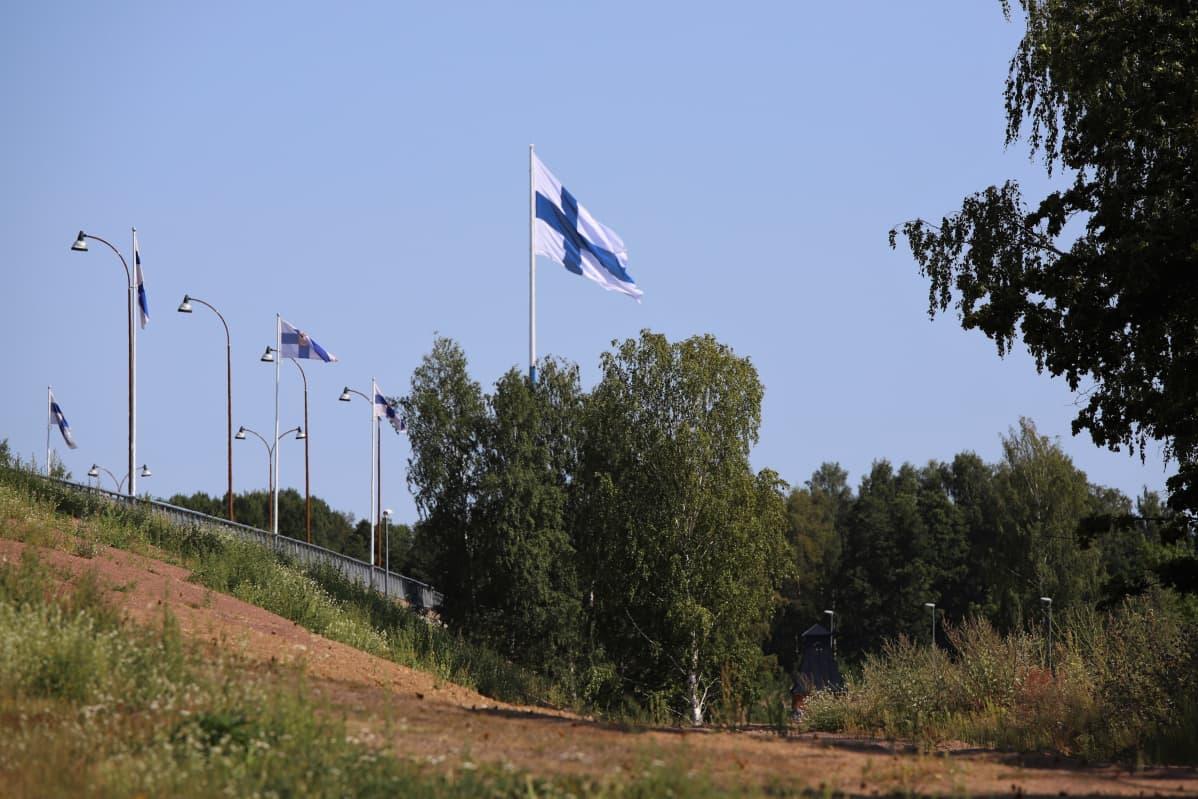 Haminan suurlipputanko ja lippu näkyvät kauas.