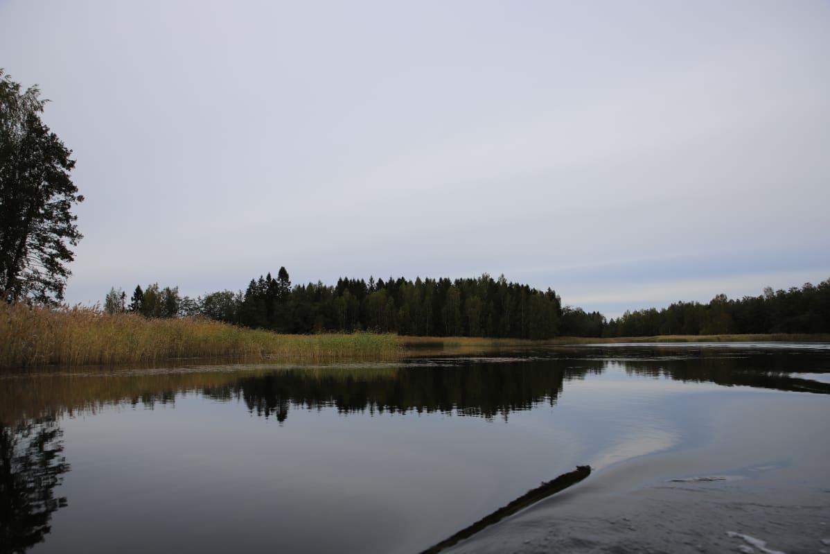 Hässjeholmenin saari on pienen venematkan päässä Ulotin saaresta