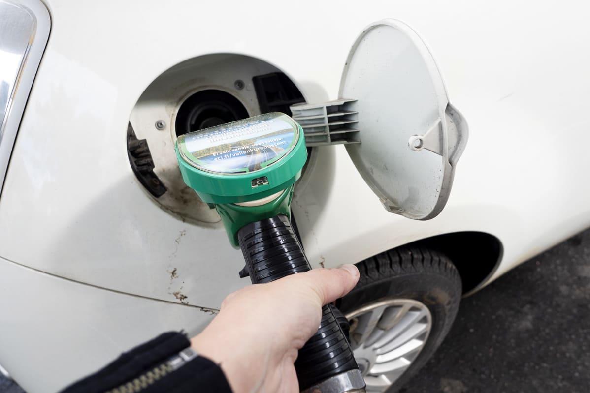 Bensiiniä tankataan autoon huoltoasemalla.