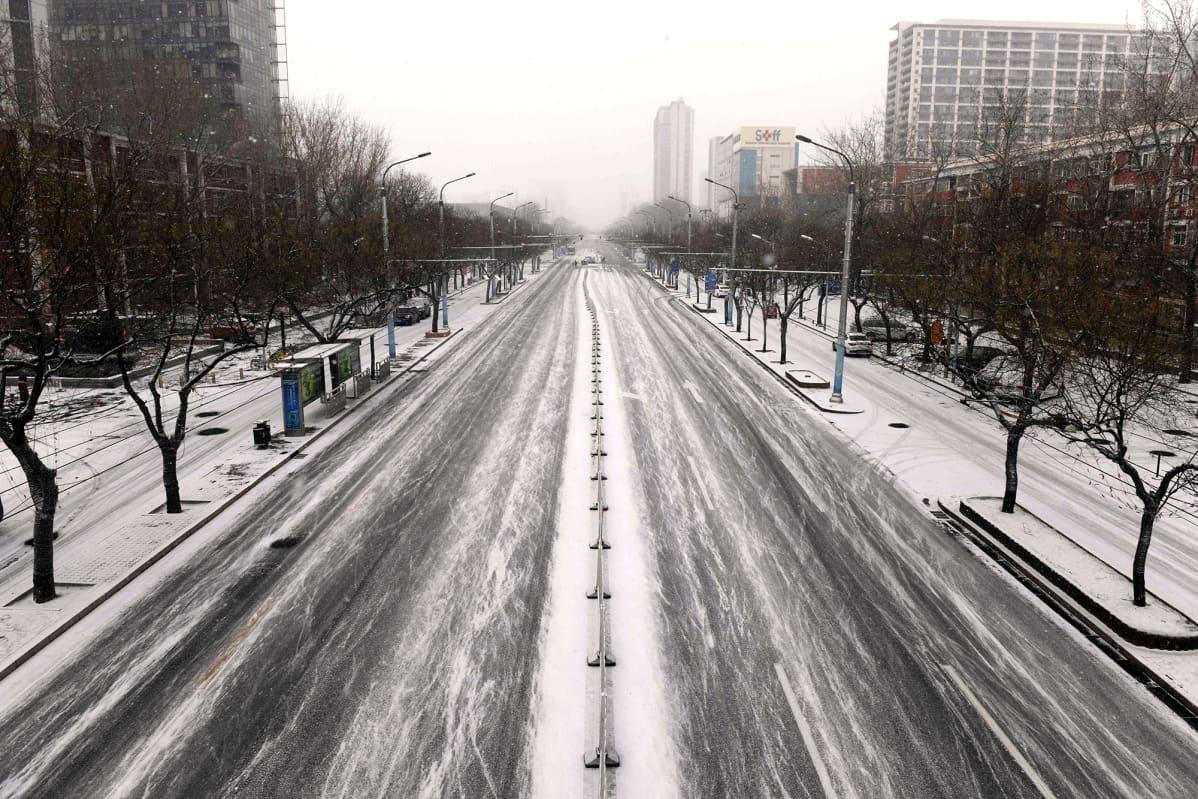 Liikenteestä autio katu Pekingissä.