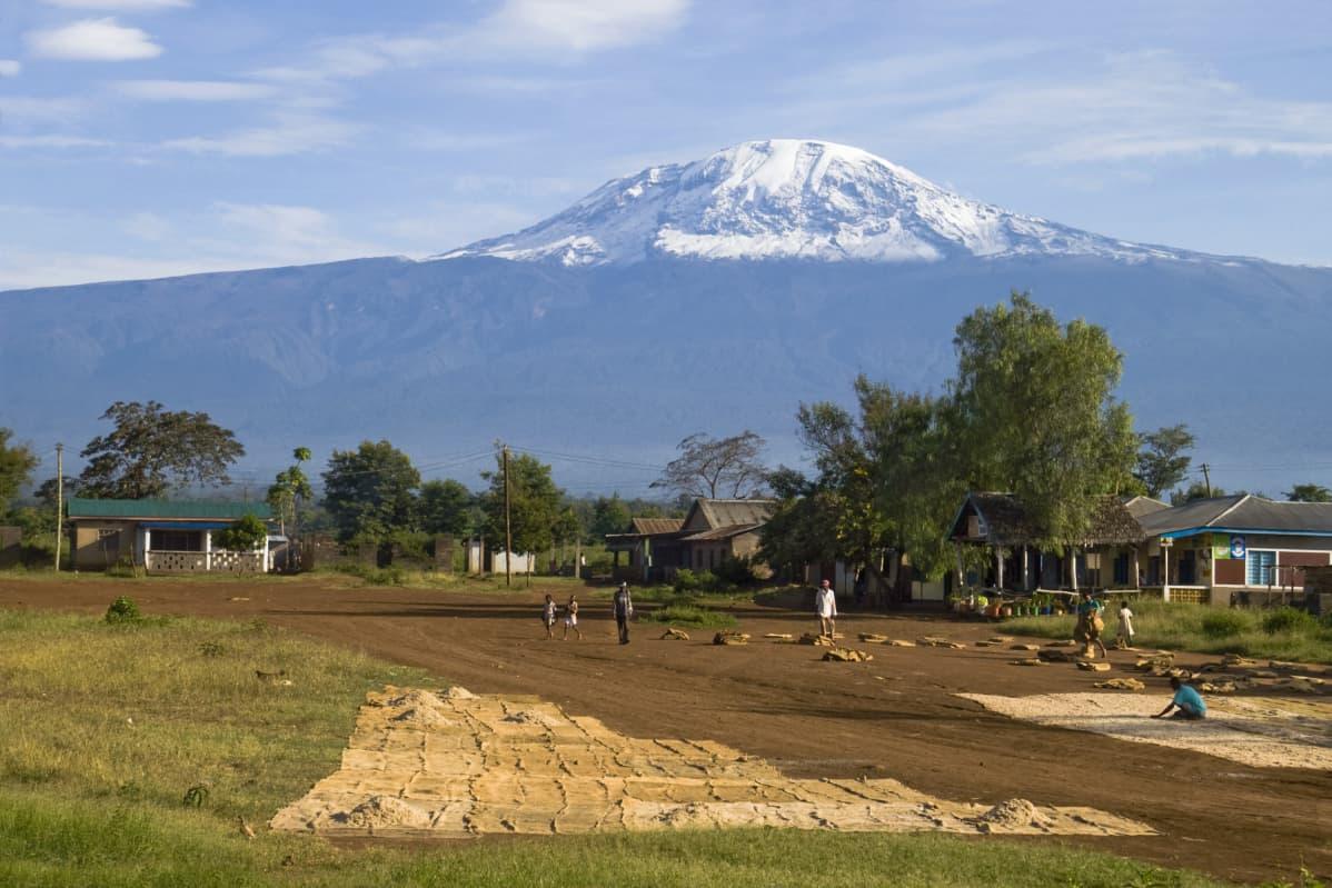 Kilimanjaro-vuori Tansaniassa