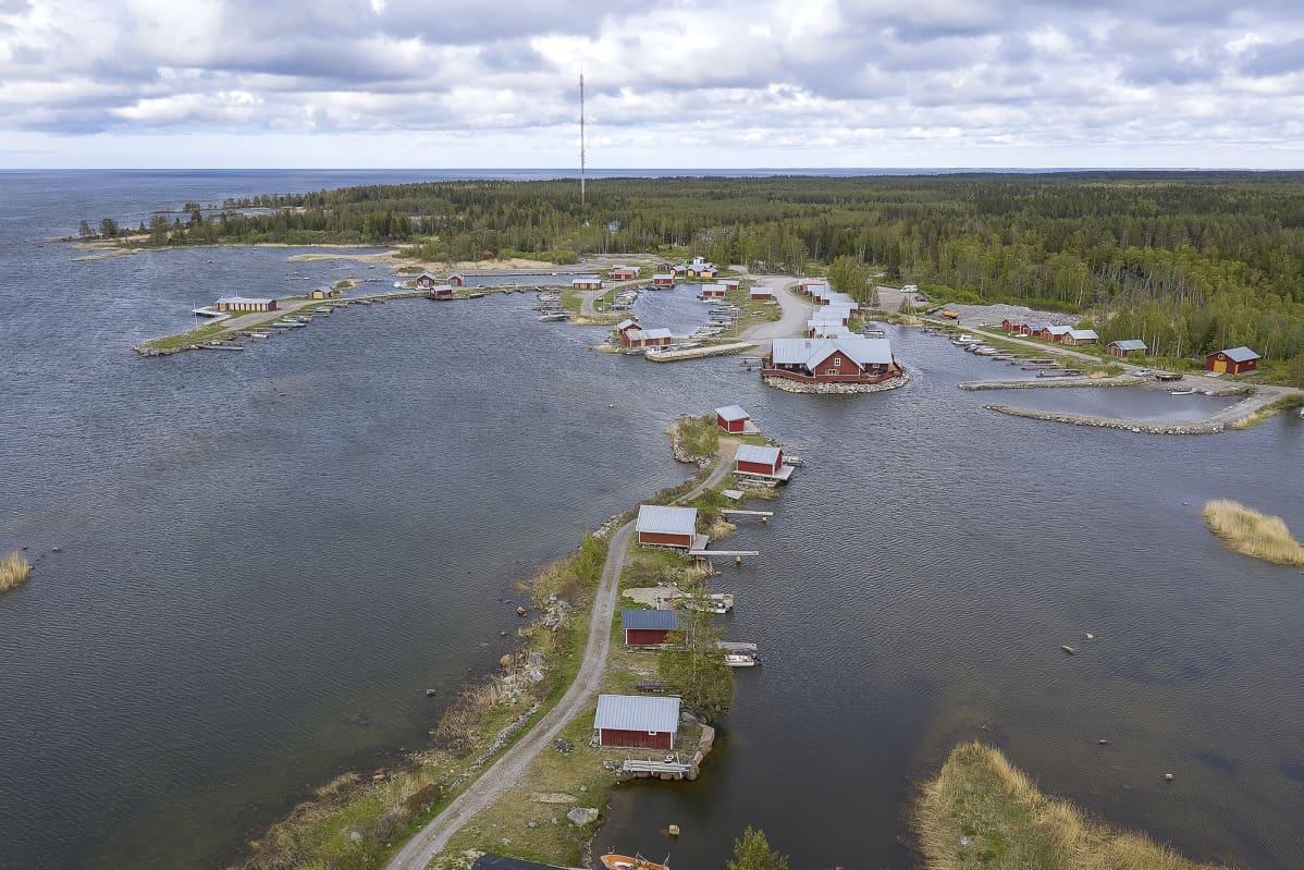 Ilmakuva Mustasaaren Svedjehamnista merenkurkusta
