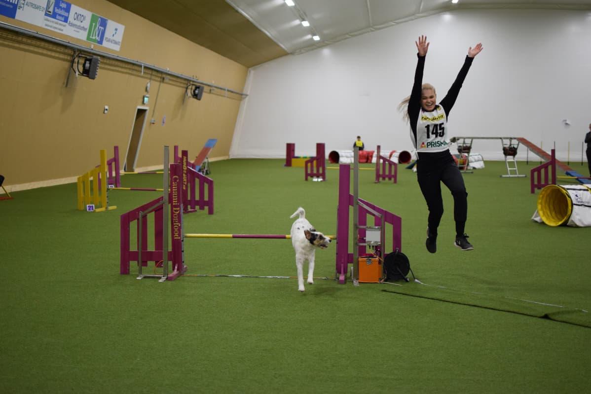 Koiraurheilu, koirahalli