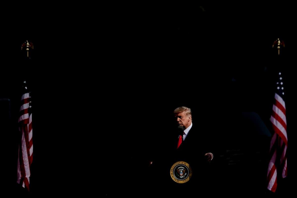 Donald Trump tummasävyisessä kuvassa.