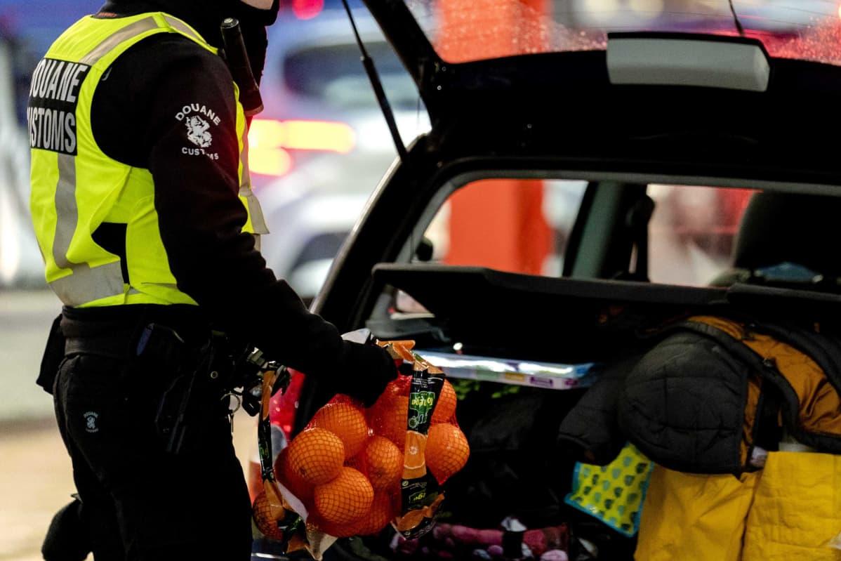 Tullimies poistaa appelsiineja auton takakontista.