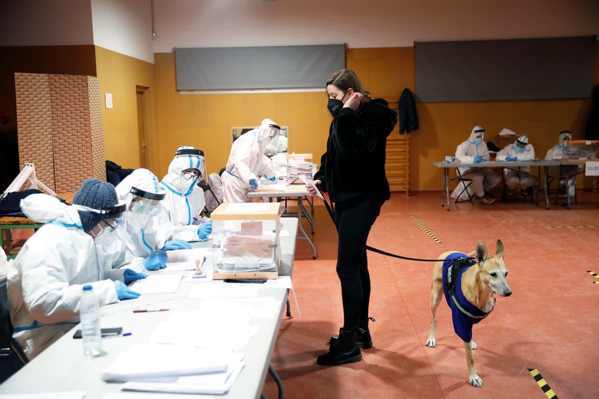 Koiransa kanssa äänestämässä oleva nainen antaa äänestyslappunsa vaalivirkailijoille.