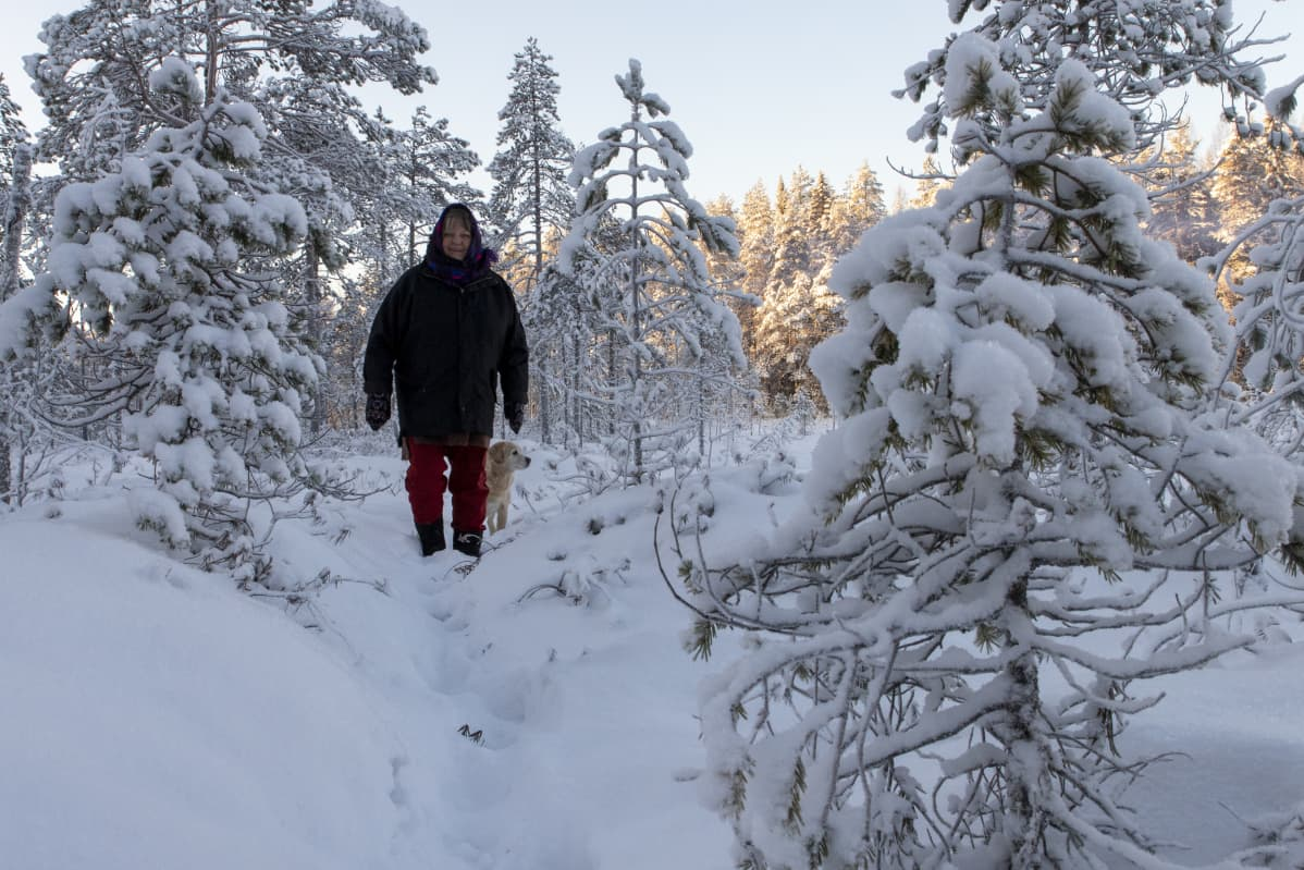 Irma Heiskanen kulkee lumisessa metsässä koiran kanssa
