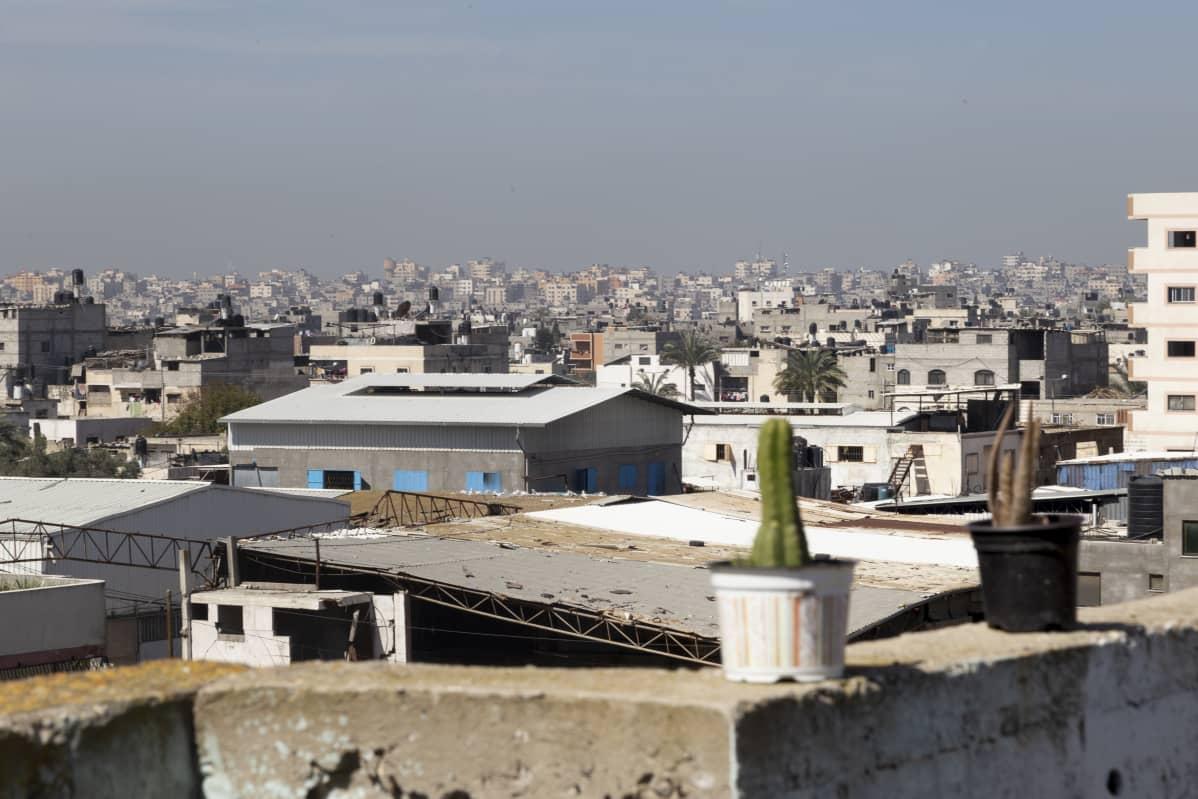 Gazan kattoja etualla kaksi kaktusta.