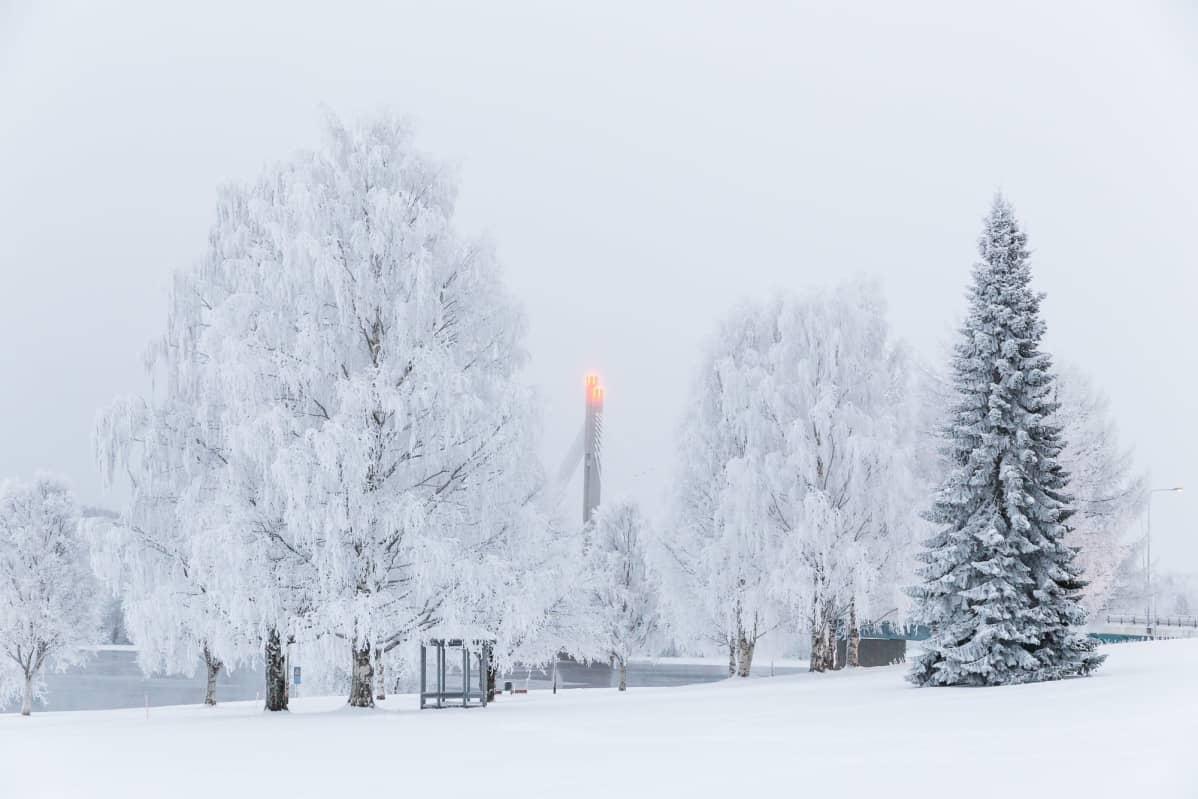 Jätkänkynttilän silta Rovaniemellä huurteisten puiden reunustamana.
