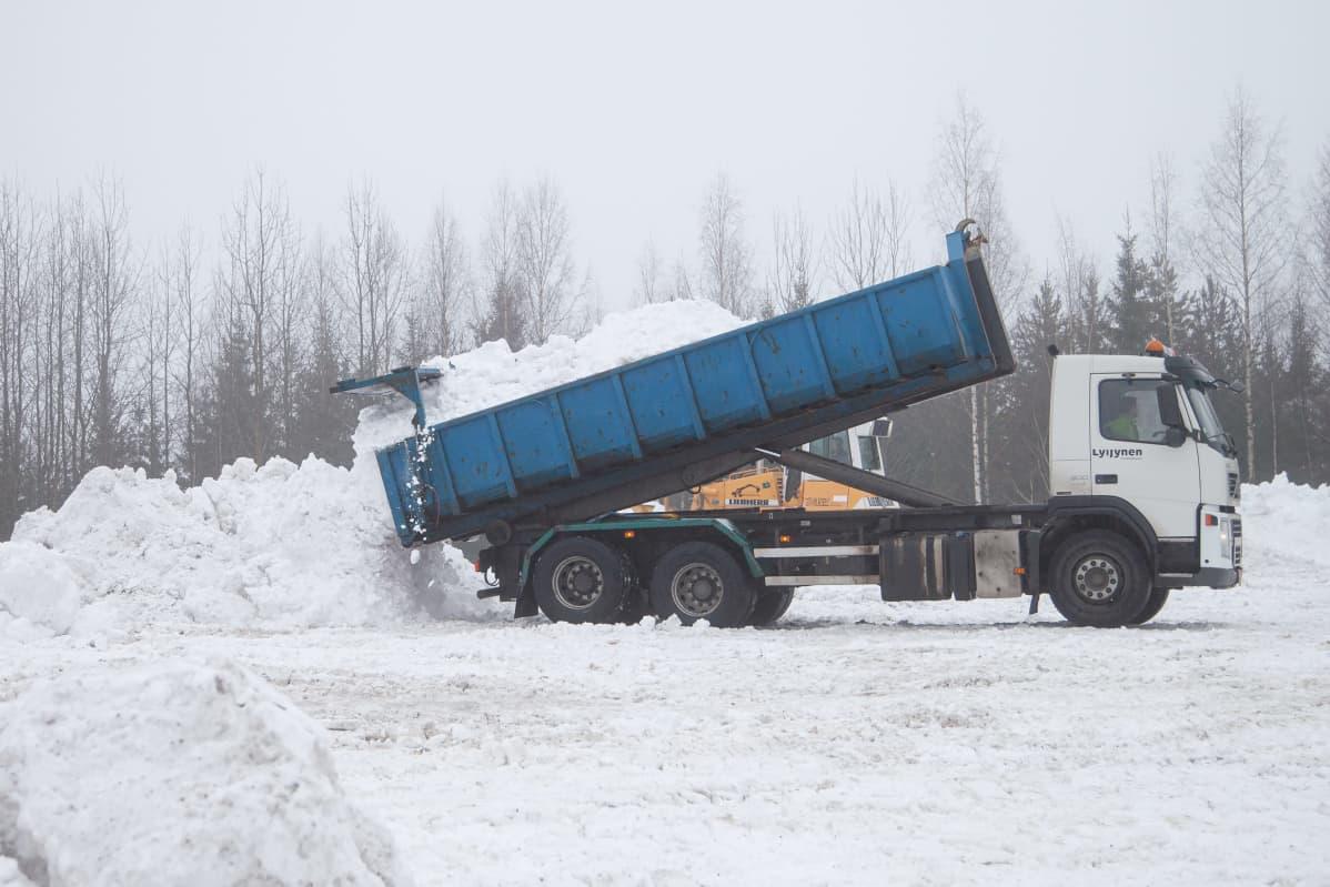 Kuorma-auto kippaa lunta Lappeenrannan lumenkaatopaikalle.