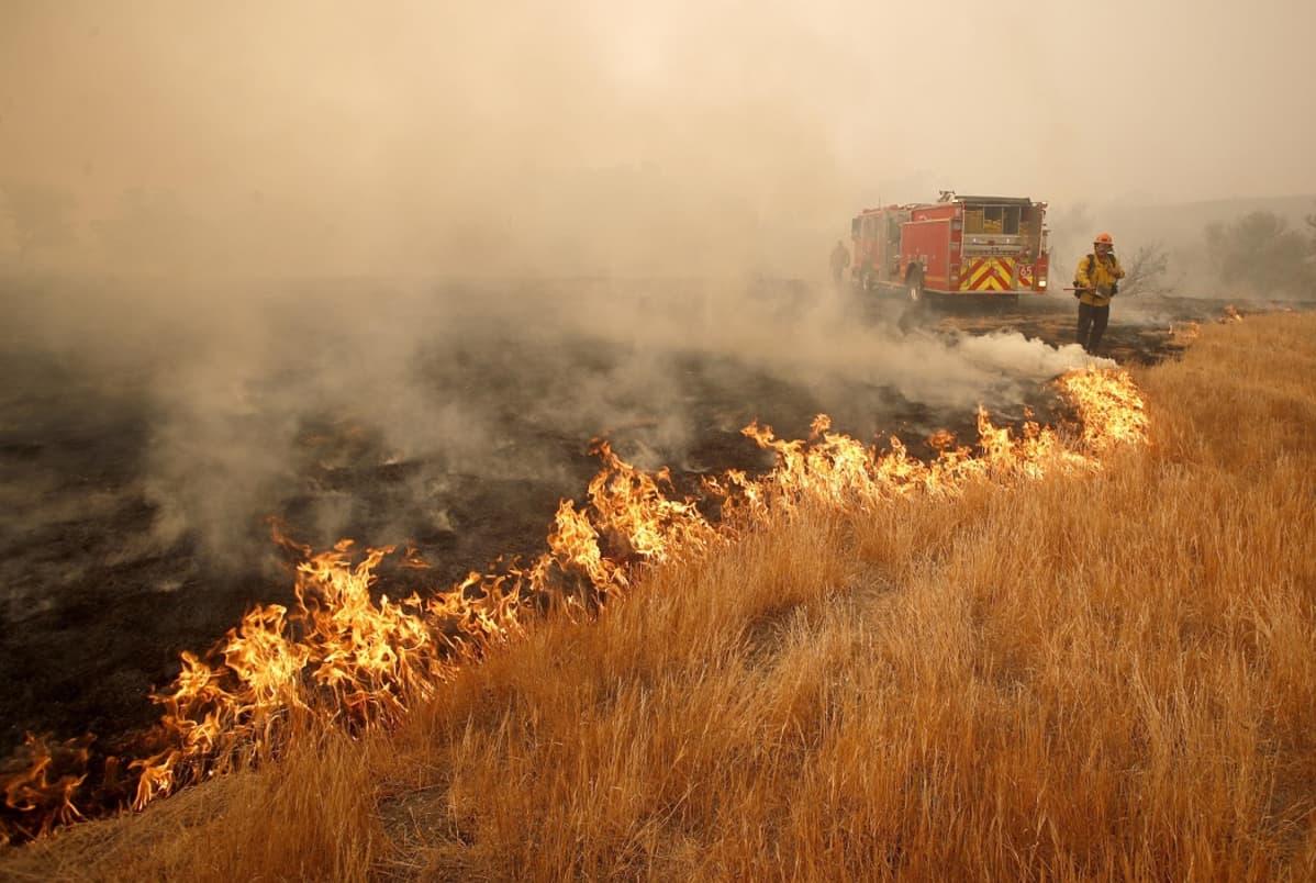 Palavan ruohikon vierellä on palomies ja paloauto, ilma on savuinen.