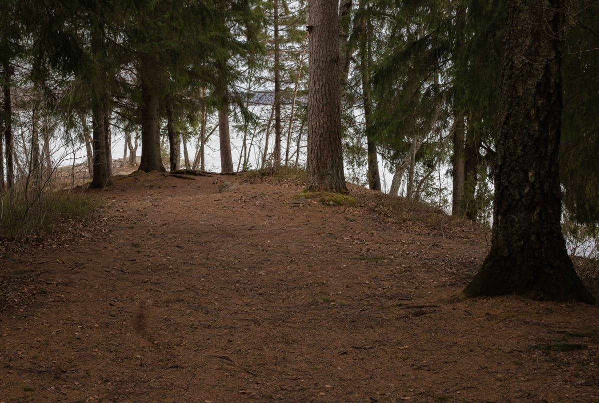 Kaivauspaikka Bodominjärvellä.