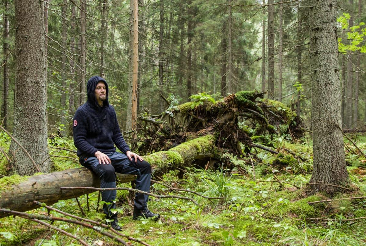 Jarko Taivasmaa voi unohtaa metsässä kaiken, mikä liittyy työhön tai ihmissuhteisiin.